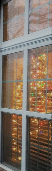 Window Christmas tree (2)